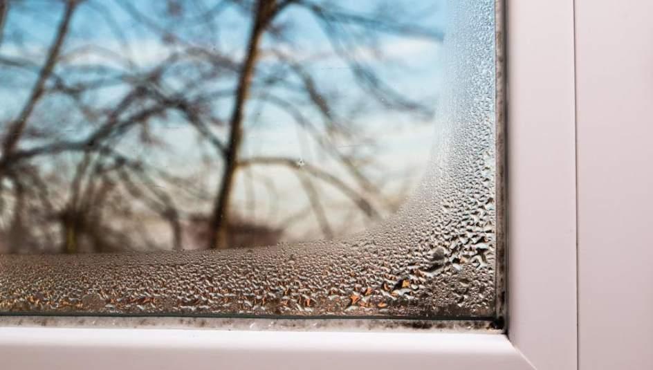 Cómo eliminar la humedad de tu casa en invierno - Publirreportajes ...
