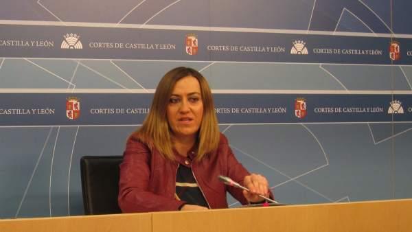 La viceportavoz del Grupo Socialista en las Cortes, Virginia Barcones