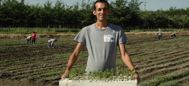 Terrenos agrícolas del proyecto 'Sembrando Oportunidades'