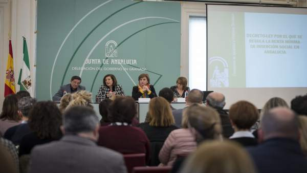La consejera de Igualdad en rueda de prensa en Granada
