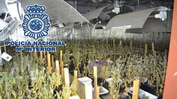 Policía Nacional Nota De Prensa Con Enlace De Vídeo E Imágenes 'La Policía Nacio