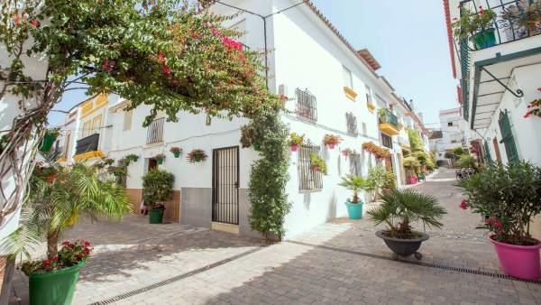 Jardin costa del sol calle tipismo andaluz pueblo estepona ornamental jardinería