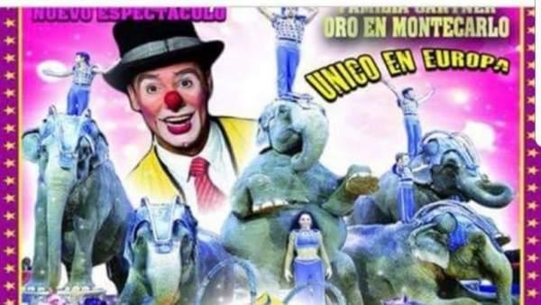 Amenazas a los circos con animales