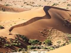 """""""Bienvenidos a Namibia, un país de mierda"""""""