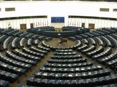 Eurodiputados abogan por la prohibición de las pruebas cosméticas en animales