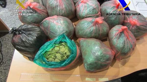 Cocaína requisada en Bilbao