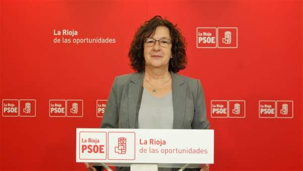 El PSOE registra 17 enmienas para políticas sociales