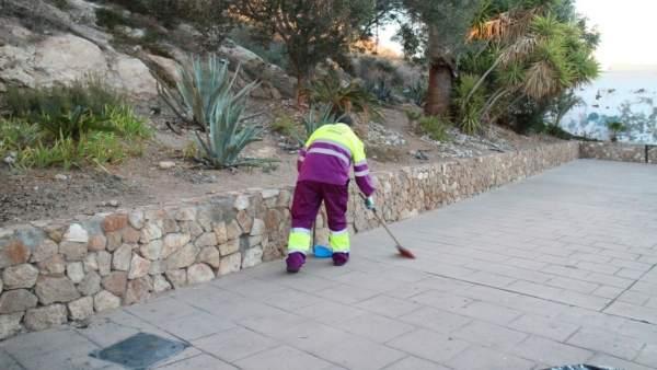 Limpieza del entorno de La Alcazaba