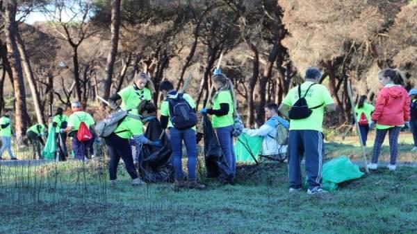 Limpieza de residuos en la zona afectada por el incendio de Las Peñuelas.