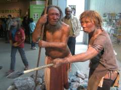 La extinción de los neandertales fue lenta y casi agónica