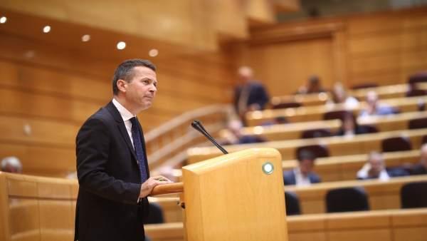 Jokin Bildarratz en el Pleno del Senado