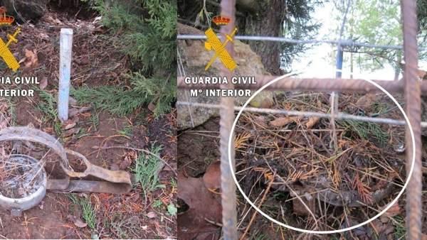 Imagen del cepo decomisado en Burgos