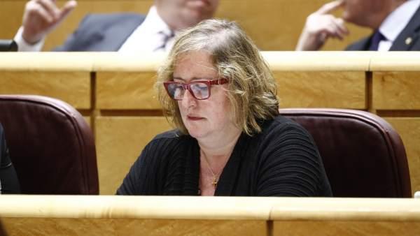 Celia Cánovas, senadora de En Comú Podem por Tarragona.