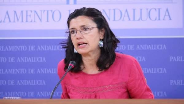 La parlamentaria de Podemos Carmen Molina