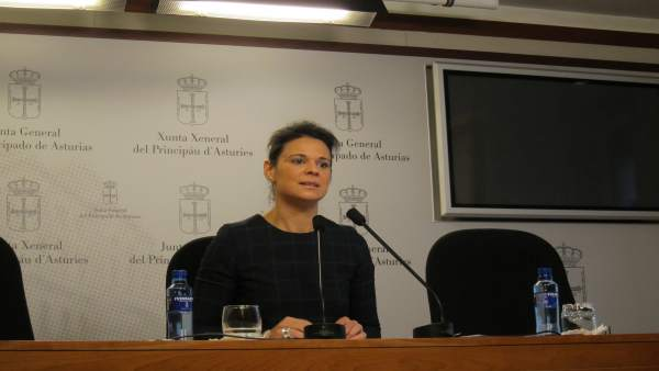 La diputada de Ciudadanos en la Junta General del Principado, Diana Sánchez