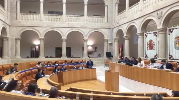 Sesión del Pleno del Parlamento de La Rioja