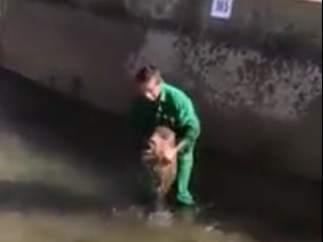 Video difundido por la entidad ecologista AnimaNaturalis que ha permitido identificar al hombre que en las imágenes maltrata a un pequeño jabalí.