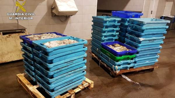 Cajas de pescado inmaduro