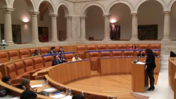 Intervención de la portavoz de Podemos, Ana Carmen Sáinz