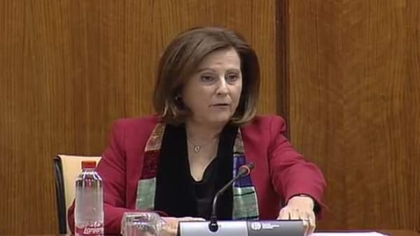 Sánchez Rubio en comisión parlamentaria