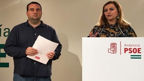 Rueda de prensa del PSOE en Granada