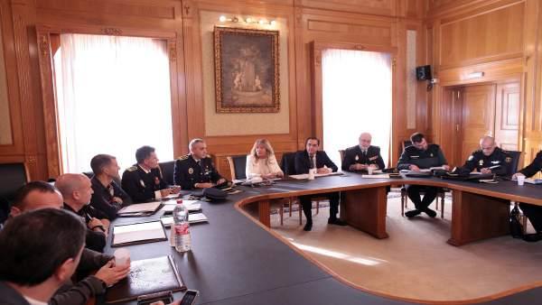 Junta local de seguridad marbella muñoz y briones alcaldesa subdelegado davis