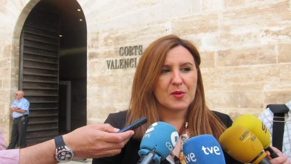 Maria José Català atiende a los medios ante las Corts