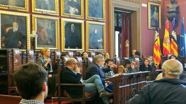 Los regidores de Cs Palma en el pleno