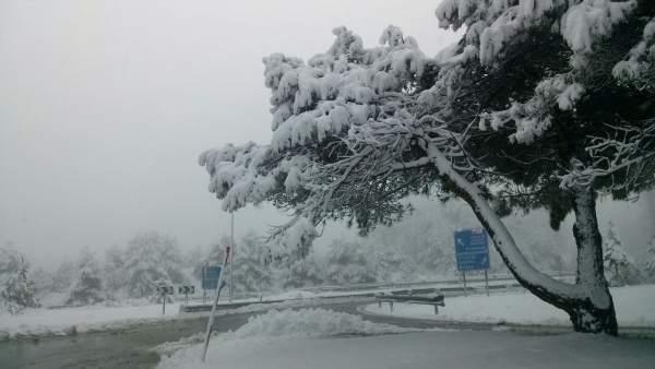 Nieve Euskadi