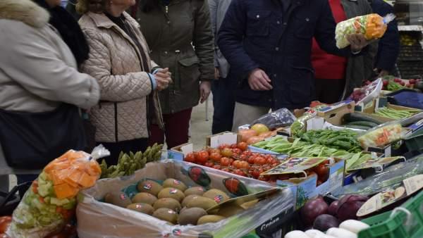 Nota Y Fotos Visita El Plantinar