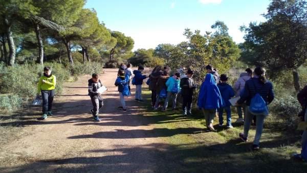 Escolares celebran el Día Educación Ambiental en Marismas Odiel.