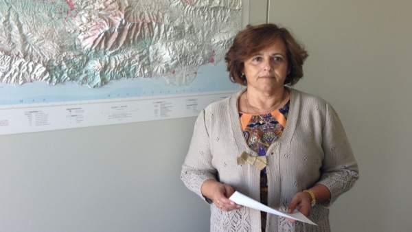 La diputada provincial del PP Soledad Martínez