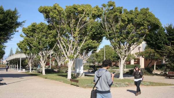 Campus de la UAL