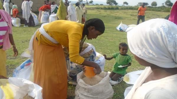 Cruz Roja y ayuntamientos mejoran la seguridad alimentaria en Etiopía