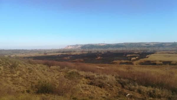 Fuego controlado llevado a cabo en el Enclave Natural del Soto de los Tetones.