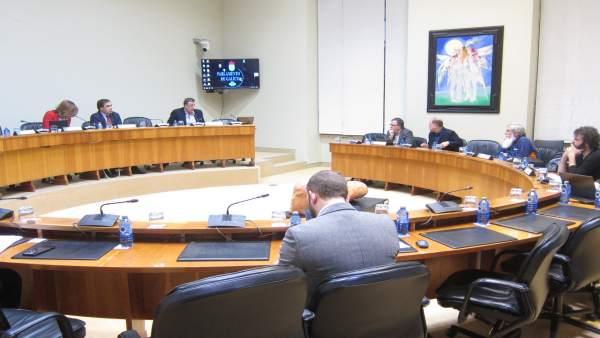 Comisión de Incendios Parlamento de Galicia