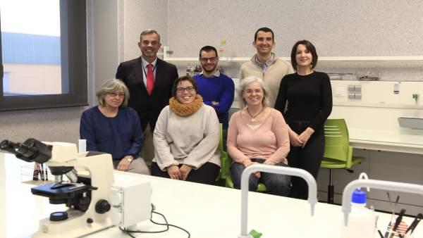Investigadores del IVIA y la CEU UCH, integrantes del equipo investigador