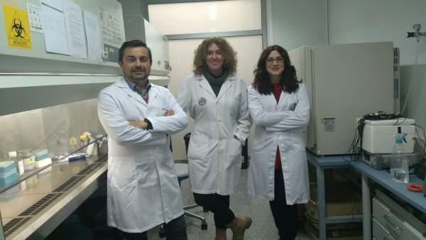 Investigadores de la Universidad de Jaén.