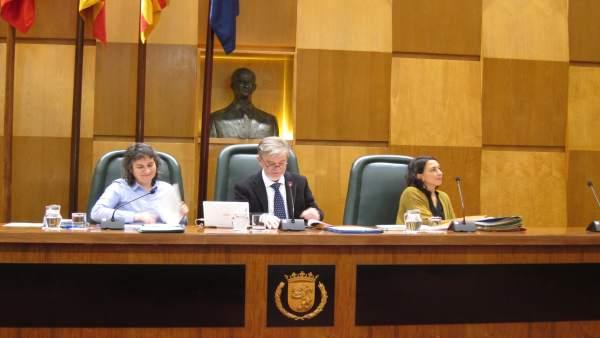 El Alcalde En El Pleno