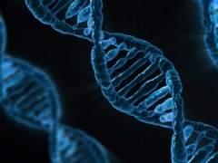ADN, gens, genètica