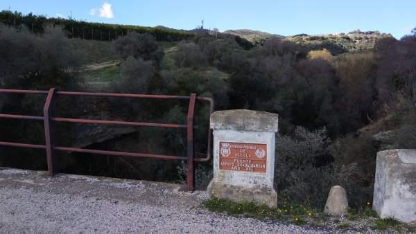Lugar donde han aparecido cientos de palomas muertas