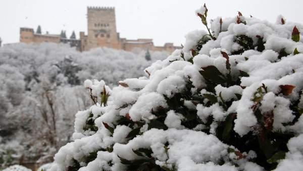 Nieve en Granada