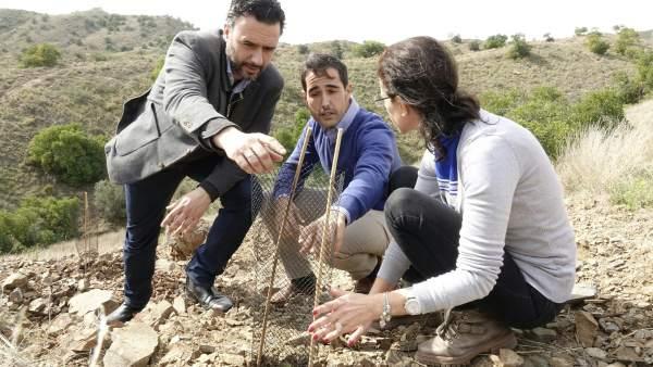 Raul Jiménez, reforestación, plantones