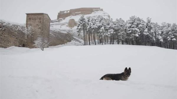 La Generalitat decreta emergència per nevades nivell zero en nou comarques