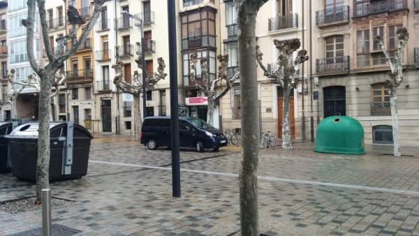 Arboles en la calle Bretón de los Herreros