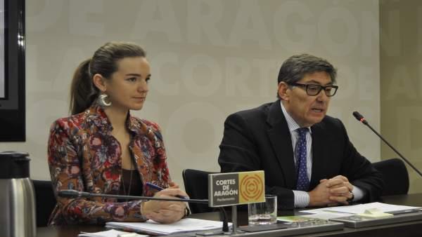 Lucía Guillén y Arturo Aliaga, diputados del PAR