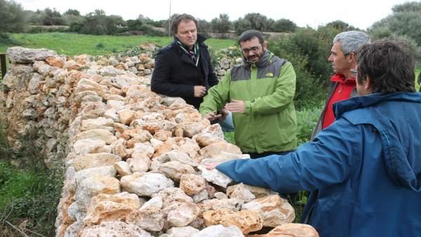 Vidal visita una zona de recuperación de 'paret seca'