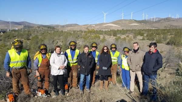 Fiscal visita los trabajos selvícolas en Sierra de Filabres