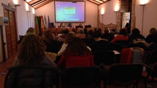 Asamblea del Consejo de Igualdad y Participación de las Mujeres Jiennenses.