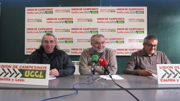 González Palacín (i), García (c) y Arias (d)